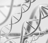 Digital,3d,Model,Of,Dna,Structure.,Black,And,White